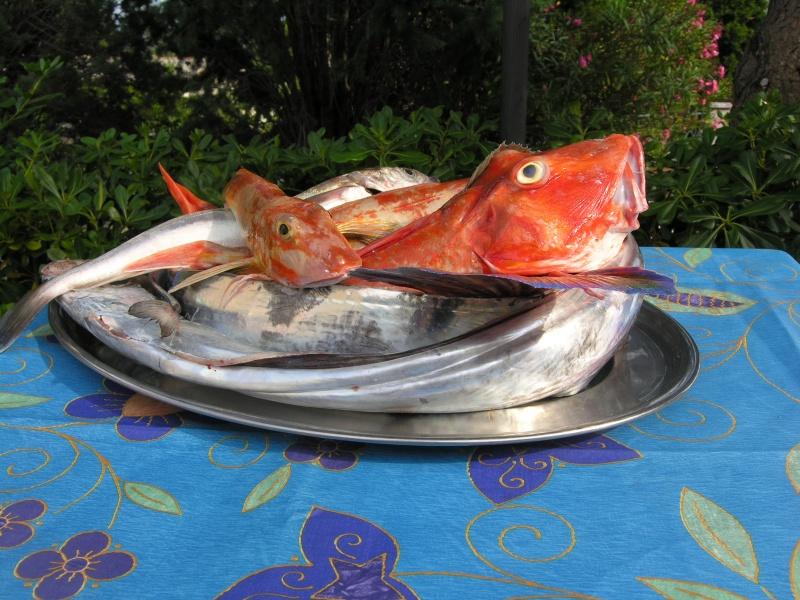ristorante pesce fresco locale